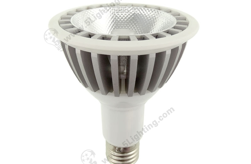 Par30 LED Long Neck 15W - 1