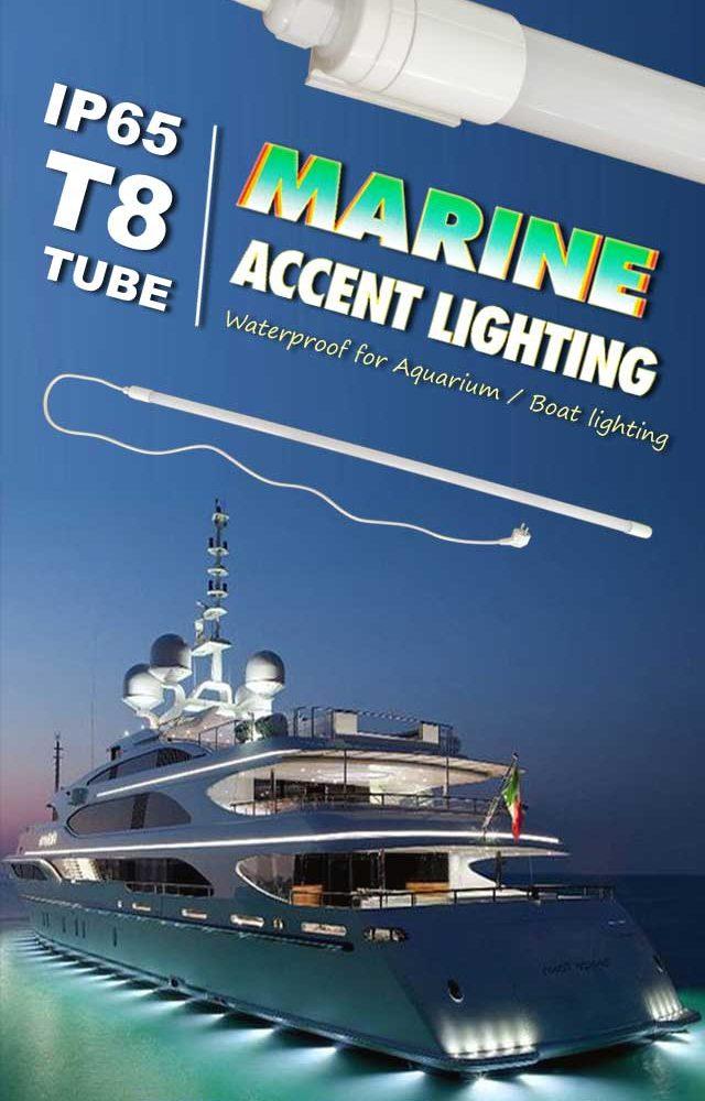 IP65 waterproof LED T8 Tube Light