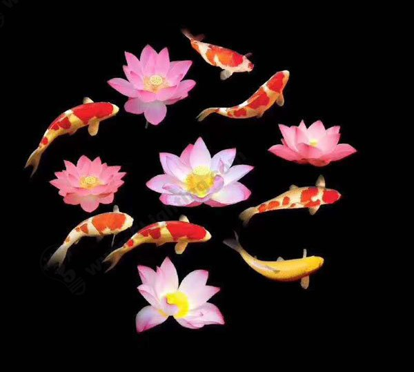 LED Projection Application for fishes and flowers
