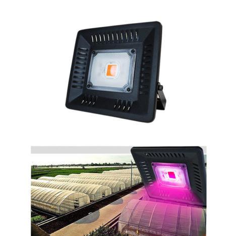 LED flood grow light 50W